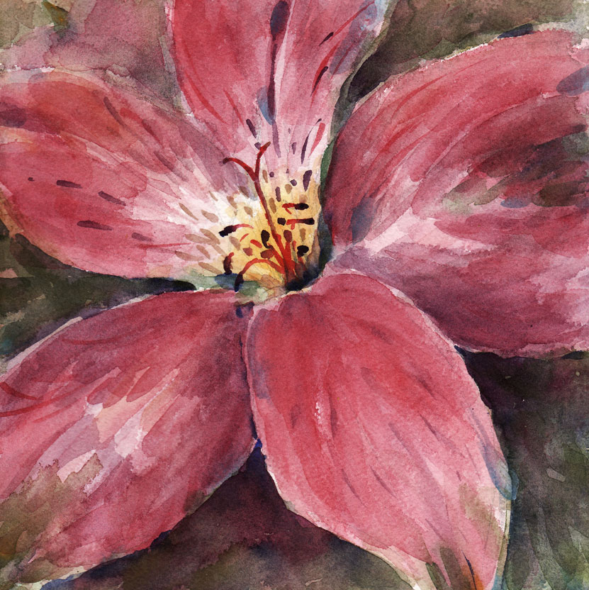 Live cheap make art studios scroll down to access the gallery day 16 pink flower mightylinksfo